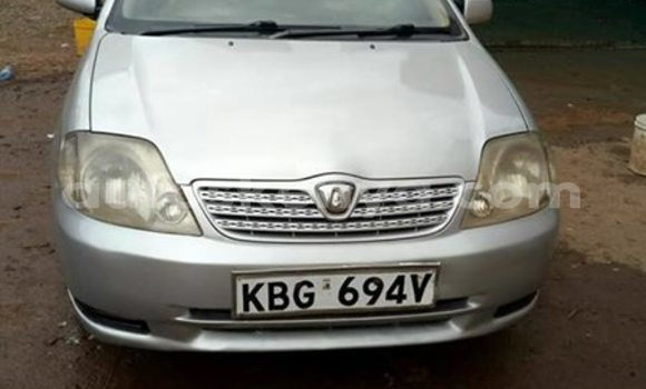 Buy Used Toyota Runx Silver Car in Nairobi in Nairobi