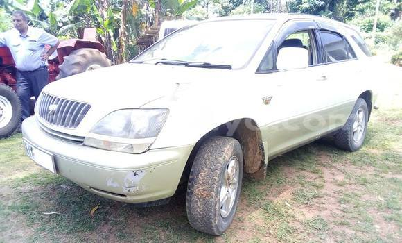 Buy Used Toyota Harrier White Car in Nairobi in Nairobi