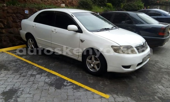 Buy Used Toyota Corolla White Car in Nairobi in Nairobi