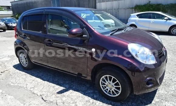 Buy Used Toyota Passo Other Car in Nairobi in Nairobi