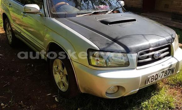 Buy Used Subaru Forester Silver Car in Nairobi in Nairobi