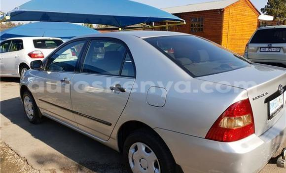 Buy Used Toyota Corolla Silver Car in Mombasa in Coastal Kenya
