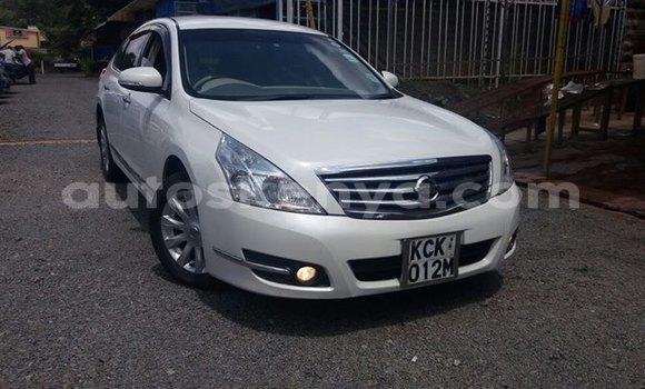 Buy Used Nissan Teana White Car in Nairobi in Nairobi