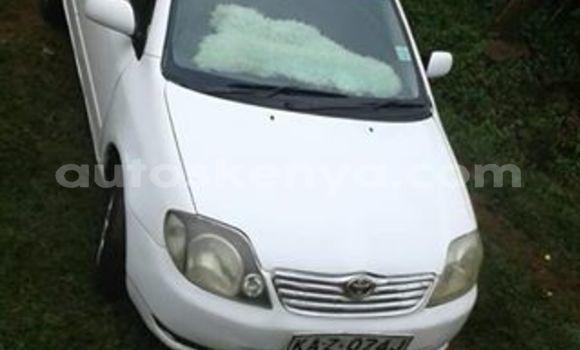 Buy Used Toyota Corolla White Car in Nyeri in Central Kenya