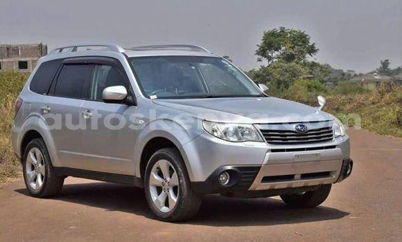 Buy Used Subaru Forester Silver Car in Mombasa in Coastal Kenya