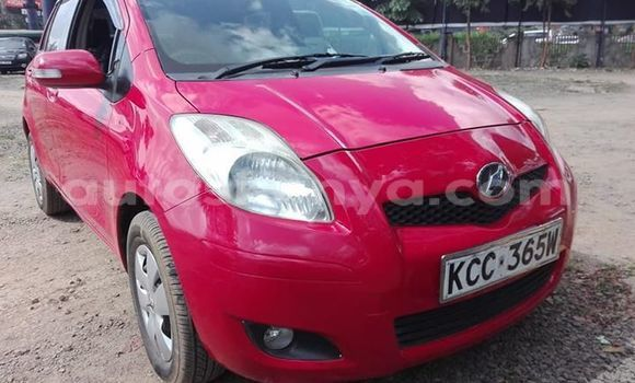 Buy Used Toyota Vitz Red Car in Nairobi in Nairobi