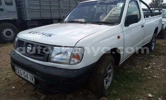 Buy Imported Nissan Hardbody White Car in Nairobi in Nairobi