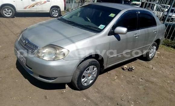 Buy Imported Toyota Corolla Silver Car in Kiserian in Nairobi
