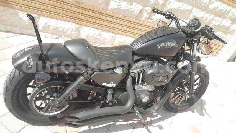 Big with watermark harley davidson iron nairobi nairobi 13125