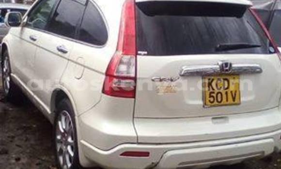 Buy Used Honda CR-V White Car in Nairobi in Nairobi