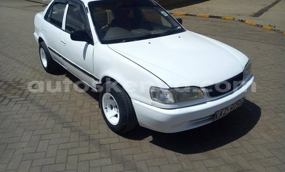 Buy Used Toyota Corolla White Car in Ongata Rongai in Nairobi