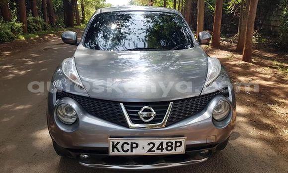 Buy Used Nissan Juke Other Car in Nairobi in Nairobi