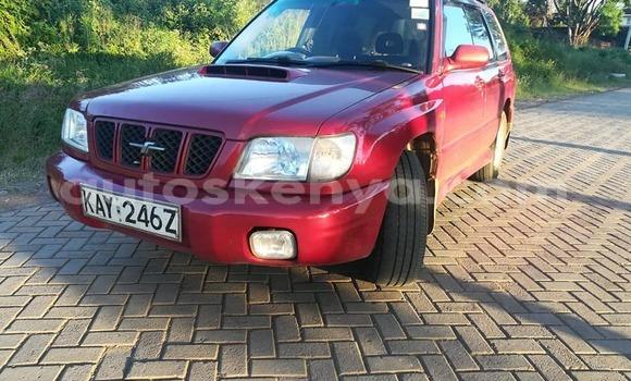 Buy Used Subaru Forester Red Car in Kiambu in Central Kenya