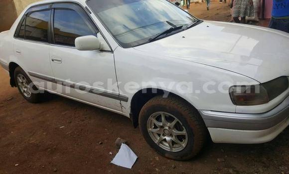 Buy Used Toyota Corolla White Car in Nairobi in Nairobi