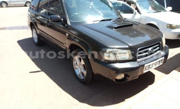 Buy Used Subaru Forester Black Car in Nairobi in Nairobi