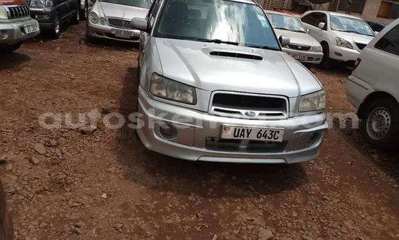 Buy Used Subaru Forester Silver Car in Mombasa in Coastal Kenya