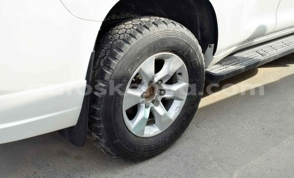 Buy Import Toyota Prado White Car in Import - Dubai in Central Kenya