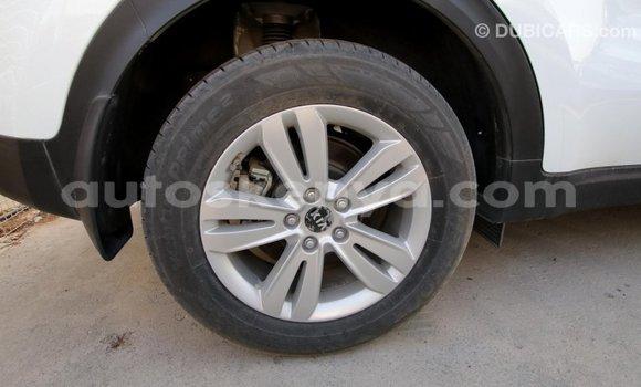 Buy Import Kia Sportage White Car in Import - Dubai in Central Kenya