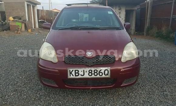 Buy Used Toyota Vitz Red Car in Nairobi in Nairobi