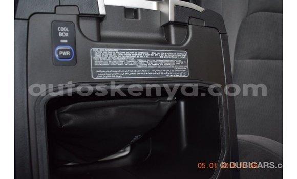 Buy Import Toyota Land Cruiser Other Car in Import - Dubai in Central Kenya