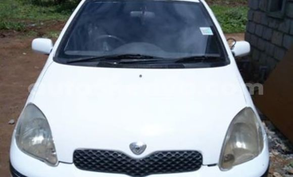 Buy Used Toyota Vitz White Car in Nairobi in Nairobi