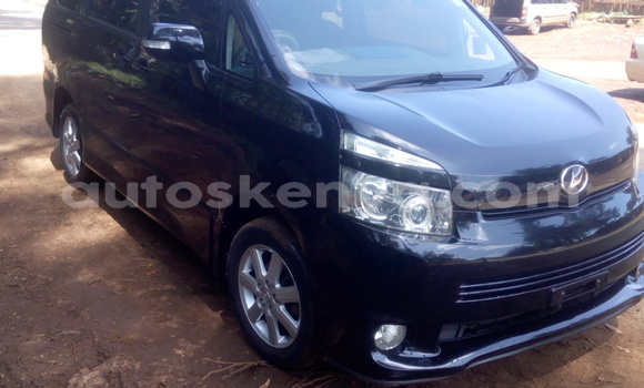 Buy Used Toyota Voltz Black Car in Kericho in Rift Valley