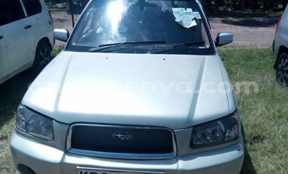 Buy Used Subaru Forester Silver Car in Ol Kalou in Central Kenya