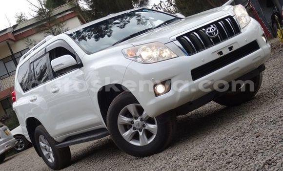 Buy Used Toyota Prado White Car in Nairobi in Nairobi