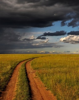 Thumb paysage kenya